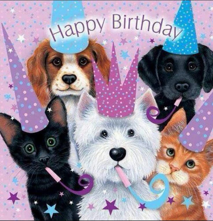 Description Happy Birthday With Cats And Dogs
