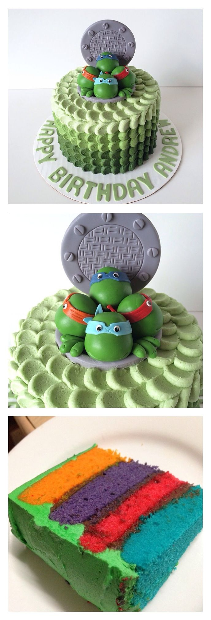 Marvelous Birthday Cakes Tmnt Ninja Turtle Cake Idea Yesbirthday Home Birthday Cards Printable Riciscafe Filternl