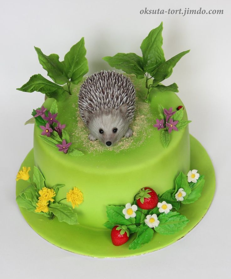 Super Birthday Cakes Hedgehog Cake Yesbirthday Home Of Birthday Funny Birthday Cards Online Inifodamsfinfo